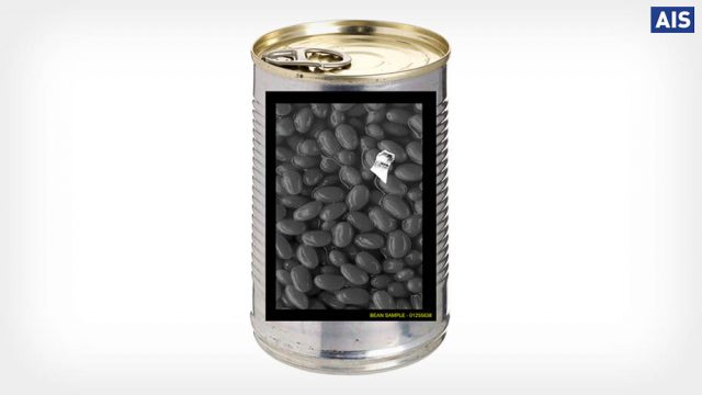 X-ray inspection of canned food and contaminant